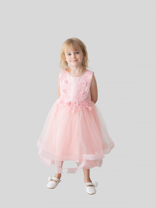 Leia Floral Embroidered Flower Girl Dress in Blush Pink